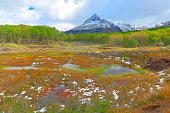 Idyllic snowcapped Andes landscape, Ushuaia - Tierra Del fuego, Argentina – South America