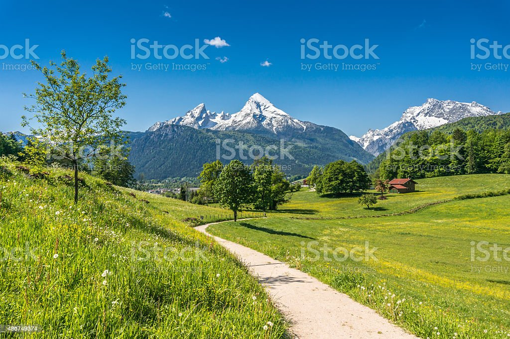 Idyllic spring landscape in the Alps with meadows and flowers stock photo