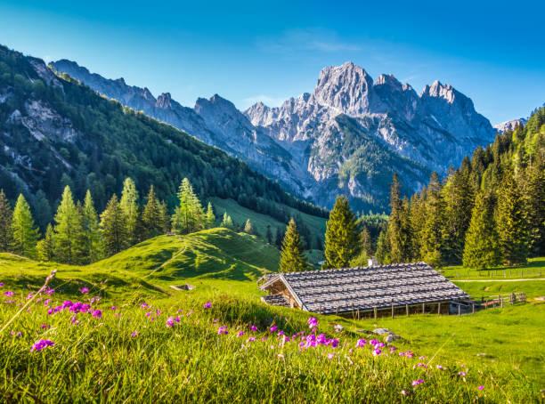 idyllische frühlingslandschaft in den alpen mit traditionellen berghütte bei sonnenuntergang - berge in bayern stock-fotos und bilder