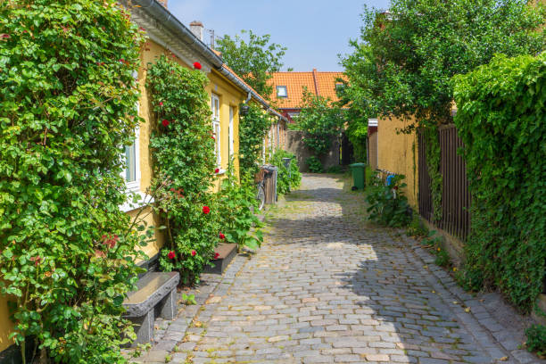 Idyllic street with pretty houses in Rønne, Bornholm, Denmark on a day in summer stock photo