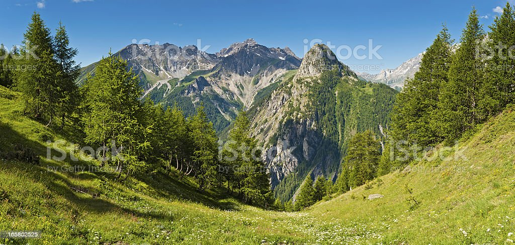 Idyllic summer Alpine meadow mountain peaks panorama Italy royalty-free stock photo
