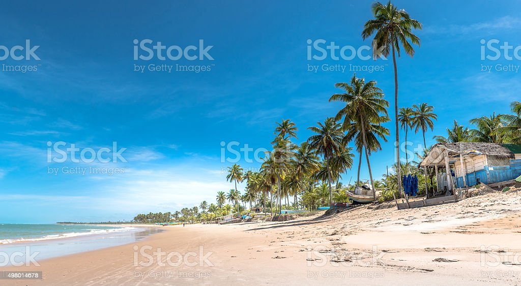 idyllic summer day beach panorama in Bahia Brazil stock photo