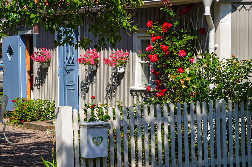 Idyllic summer garden with blooming flowers and a mailbox on the fence
