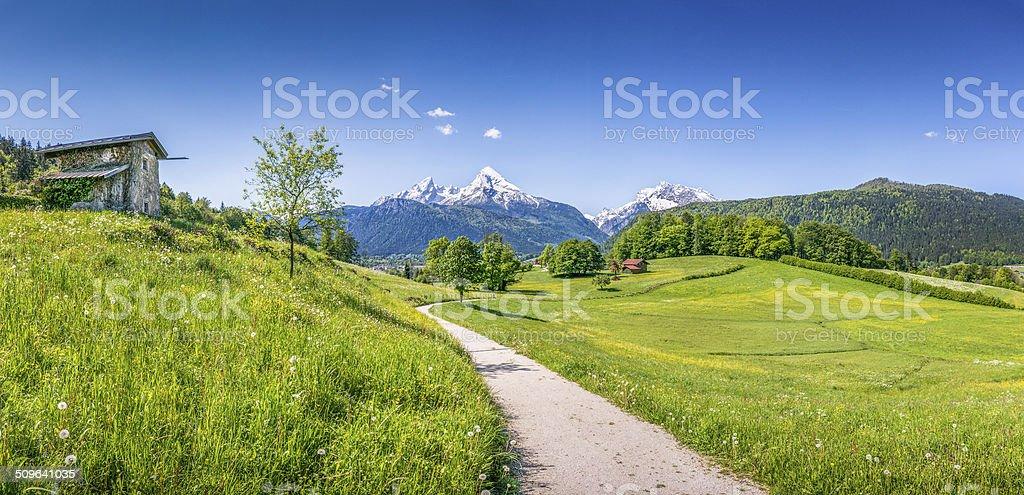 Idyllic summer landscape in the Alps stock photo