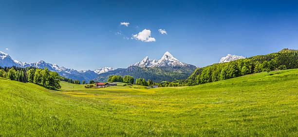 idyllische sommer landschaft der alpen - österreichische kultur stock-fotos und bilder