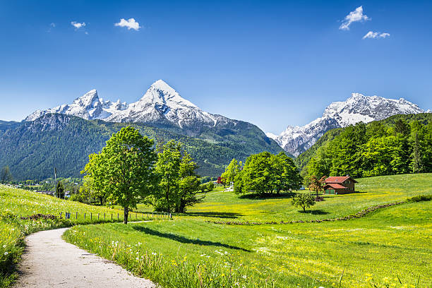 Idyllic summer landscape in the Alps with snowcapped mountain tops Idyllic summer landscape in the Alps, Nationalpark Berchtesgadener Land, Bavaria, Germany. bavarian alps stock pictures, royalty-free photos & images
