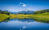 夏の風景とのどかな山の湖のアルプスの