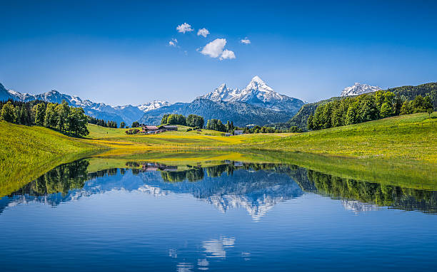 idyllic summer landscape with clear mountain lake in the alps - mountain stock photos and pictures