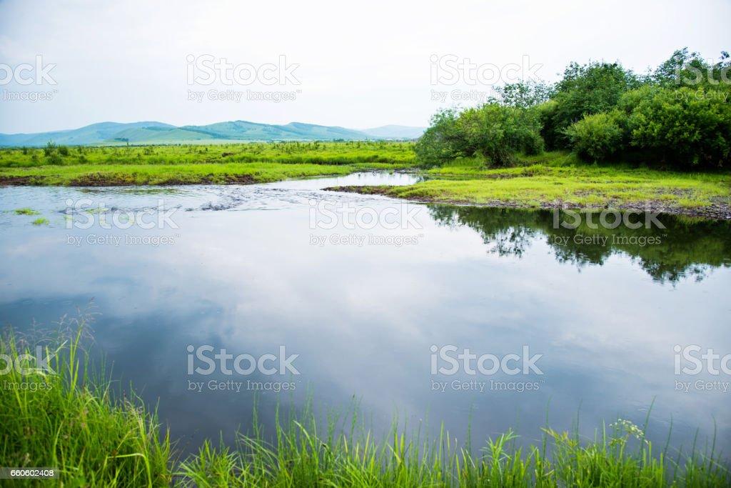 Idyllic summer landscape with lake stock photo