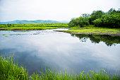 Idyllic summer landscape with lake