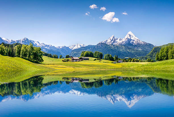 idyllic summer landscape with mountain lake in the alps - 奧地利 個照片及圖片檔