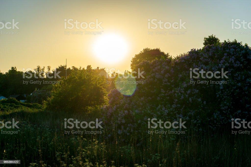 丹麥 Bornholm 的田園風光, 夏日的一天 - 免版稅丹麥圖庫照片