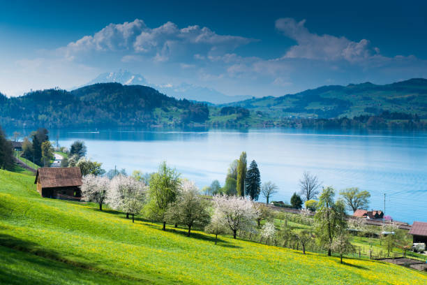 idyllic Swiss country mountain landscape with farms lake and mountains in the distance view of picturesque Swiss mountain and lake landscape at the Zugersee Lake in central Switzerland on a beautiful spring day zug stock pictures, royalty-free photos & images