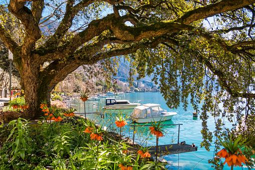 Idyllic swiss riviera of Lake Geneva in Montreux, Switzerland