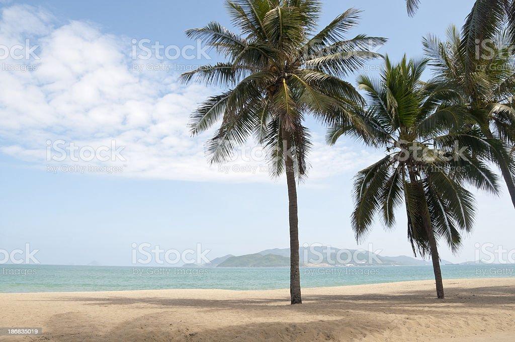 Idyllic Tropical Beach In Vietnam royalty-free stock photo