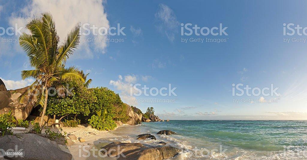 Idyllic tropical island beach palm trees warm surf golden sands royalty-free stock photo