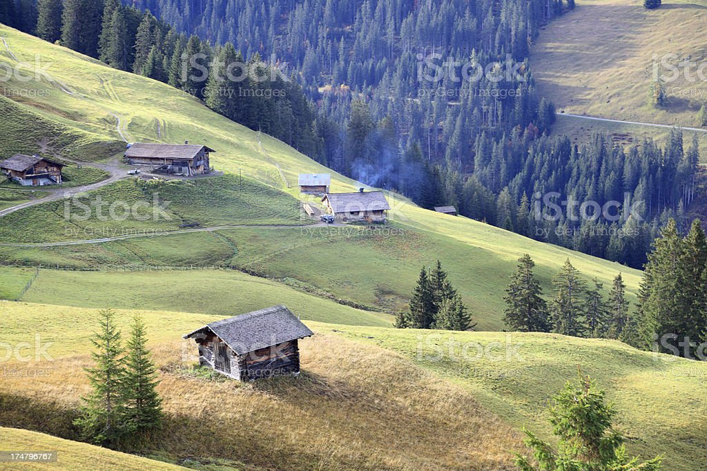 idyllic typical swiss landscape huts meadows forests and mountain Alps royalty-free stock photo