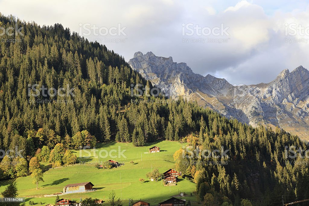 idyllic typical swiss landscape meadows forests and mountain Alps stock photo