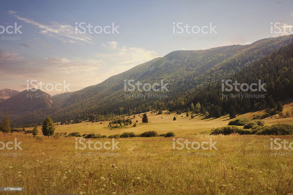 idyllic valley in sunset royalty-free stock photo