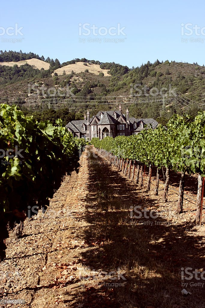Idyllic vineyards with victorian vinery house royalty-free stock photo