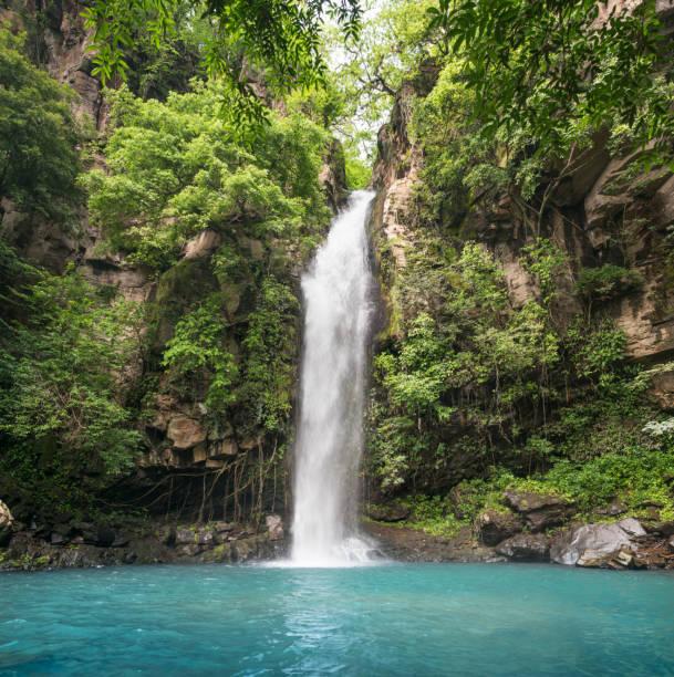 idyllic waterfall, rincón de la vieja national park, costa rica - waterfall stock photos and pictures