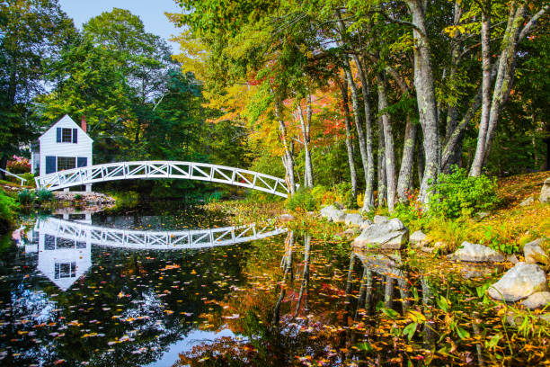 Idyllic white bridge and building reflecting on the still water in Autumn White footbridge reflecting on the water among the colorful autumn foliage footbridge stock pictures, royalty-free photos & images