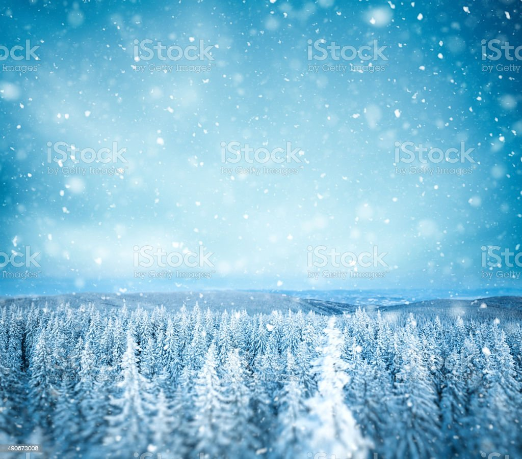 Idyllic Winter Background stock photo