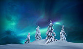 Snowcapped trees under the beautiful night sky with colorful aurora borealis.