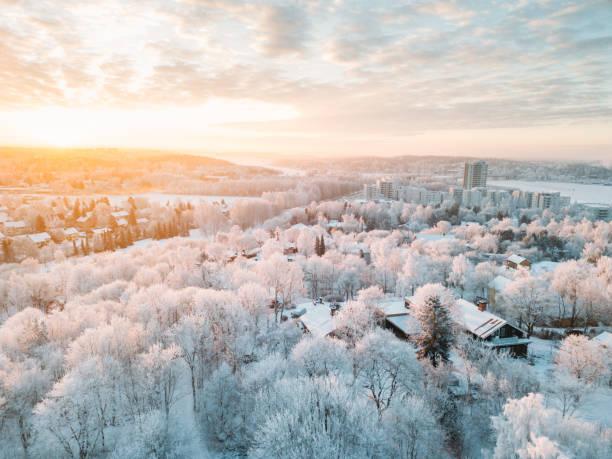 나무에 서 리와 목가적인 겨울 투르쿠 도시 (핀란드) 일출 - 핀란드 뉴스 사진 이미지