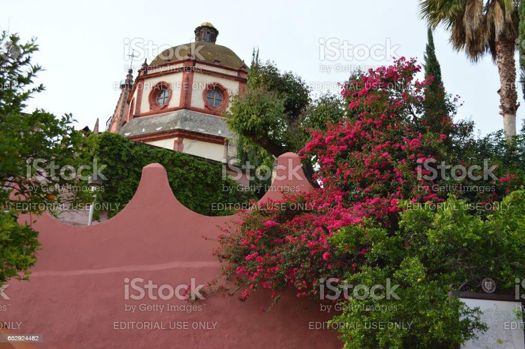 Iglesia con bugambilias stock photo