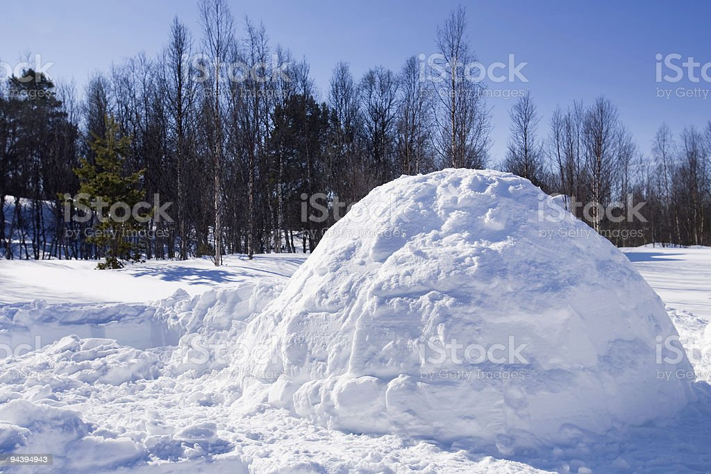 Igloo in Winter royalty-free stock photo