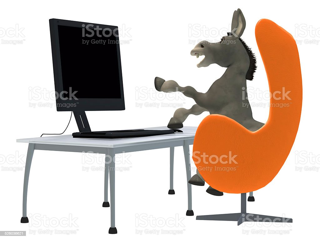 ignorant donkey learning computer stock photo
