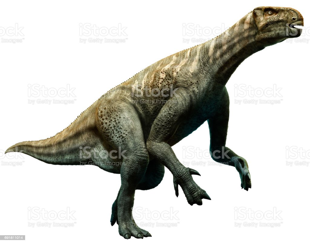 Iguanodon stock photo