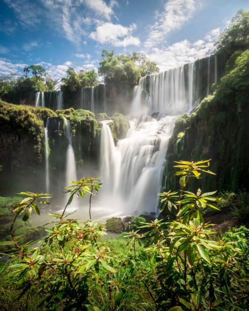 Iguazú Falls Beautiful waterfall in Iguazu, Argentina idyllic stock pictures, royalty-free photos & images