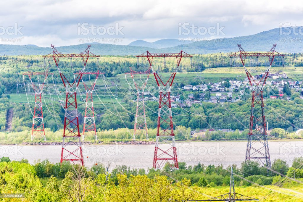 Ile D'Orleans landscape with field of yellow dandelion flowers in summer and red electric power lines stock photo