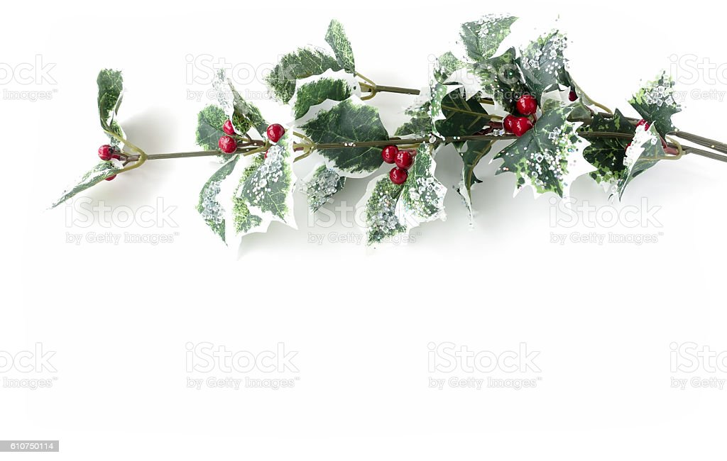 Ilex aquifolium - Artificial Holly branch with fruits stock photo
