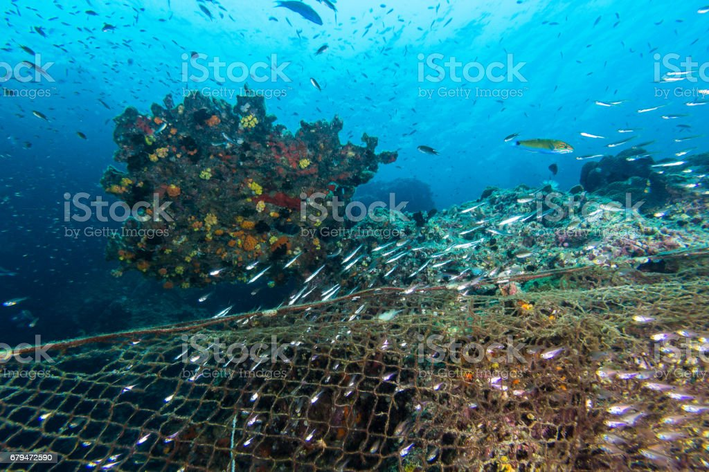 Illegal Fishing in the marine national park 免版稅 stock photo