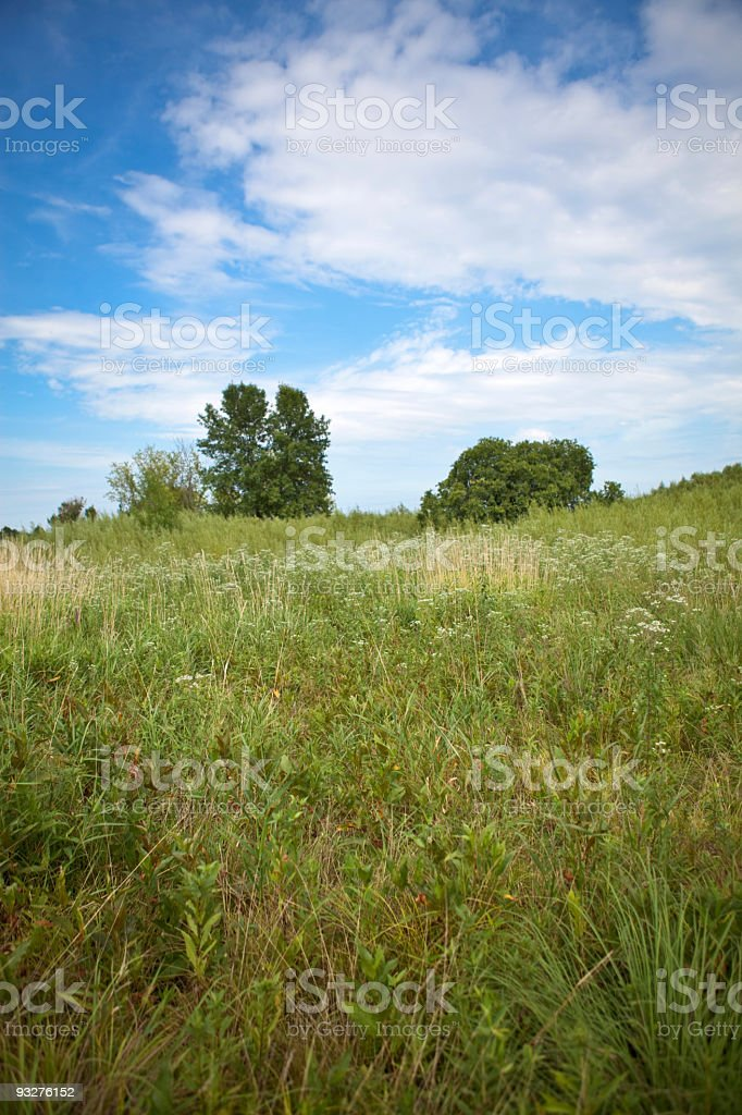 Illinois Prairie stock photo
