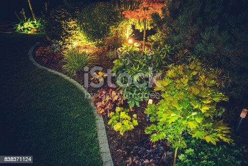 Illuminated Backyard Garden. Night Time Photo. Outdoor Garden Lighting.