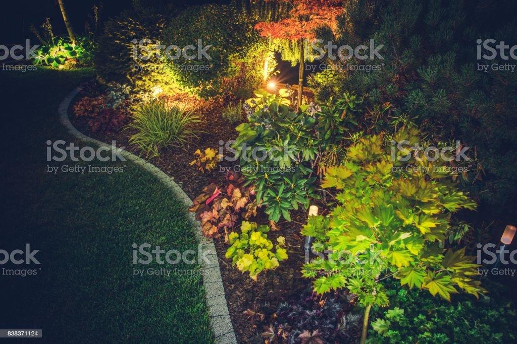 Illuminated Backyard Garden stock photo