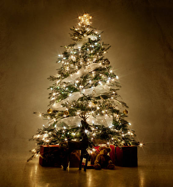 illuminated christmas tree at night - christmas tree stock photos and pictures