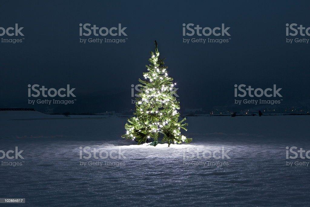 Illuminated Christmas Tree On The Snow At Night Stock Photo More