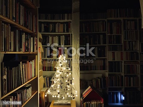 1057183432 istock photo Illuminated christmas tree standing in the library 1057183388