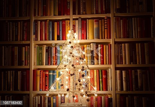 1057183432 istock photo Illuminated christmas tree standing in the library 1057183432