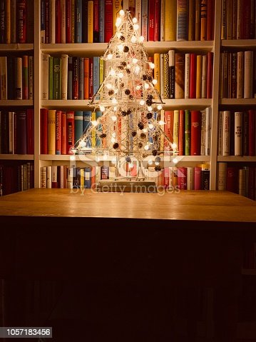 1057183432 istock photo Illuminated christmas tree standing in the library 1057183456