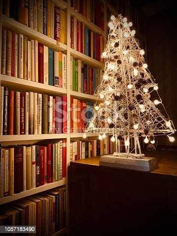 1057183432 istock photo Illuminated christmas tree standing in the library 1057183490
