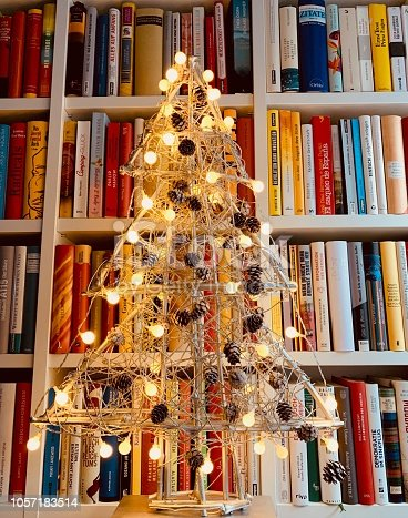 1057183432 istock photo Illuminated christmas tree standing in the library 1057183514