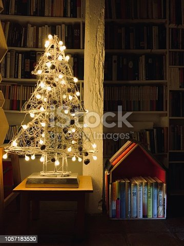 1057183432 istock photo Illuminated christmas tree standing in the library 1057183530