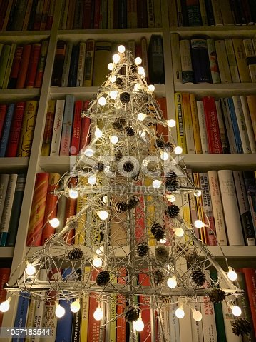 1057183432 istock photo Illuminated christmas tree standing in the library 1057183544