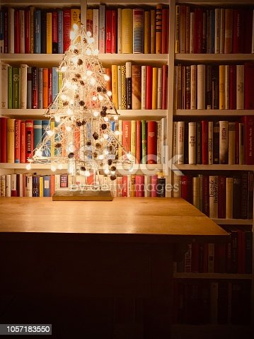 1057183432 istock photo Illuminated christmas tree standing in the library 1057183550